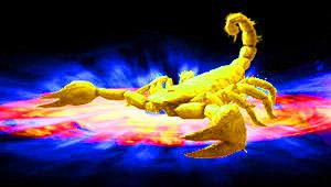 Скорпион фото знак зодиака