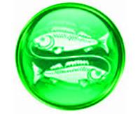 Рыбы мужчина совместимость знак зодиака