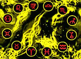 совместимость по дате рождения гороскоп