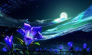 календарь цветовода лунный
