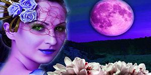 календарь лунный стрижек