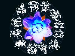 цветочный гороскоп по дате рождения