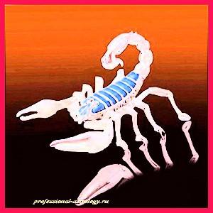 Мужчина Скорпион. Любовный гороскоп