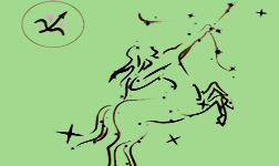 любовный гороскоп Стрелец и Стрелец