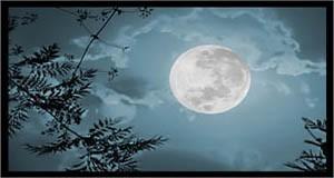 дата рождения по лунному календарю