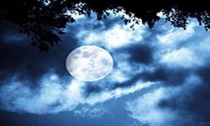лунный гороскоп