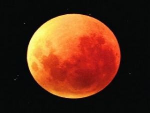 знак лунный зодиака