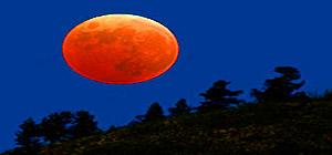 засолка огурцов лунный календарь